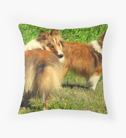 Sheltie Sweeties for Vickie Throw Pillow