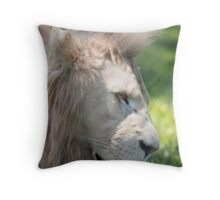 Portrait of a Young Male Throw Pillow