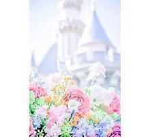springtime kingdom Photographic Print