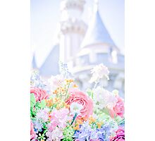springtime kingdom Photographic Print