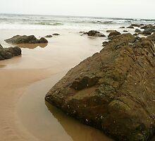 Shelley Beach, Port Macquarie by mystery