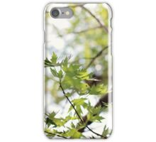 Summer Maple iPhone Case/Skin