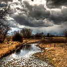 A Storm Approaches by Kasey Cline