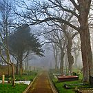 Foggy Path Through the Churchyard by NeilAlderney
