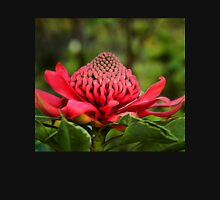 Waratah - A Symbol of Australia in Spring Hoodie