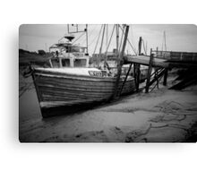 A Challenge, Gibraltar Point, Lincolnshire Canvas Print