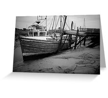 A Challenge, Gibraltar Point, Lincolnshire Greeting Card