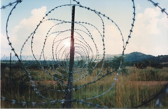 Barbed Wire Sunset by Darren Stein