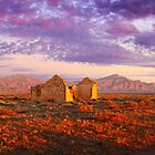 Settler's Ruin, Flinders Ranges, South Australia by Michael Boniwell