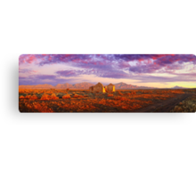 Settler's Ruin, Flinders Ranges, South Australia Canvas Print