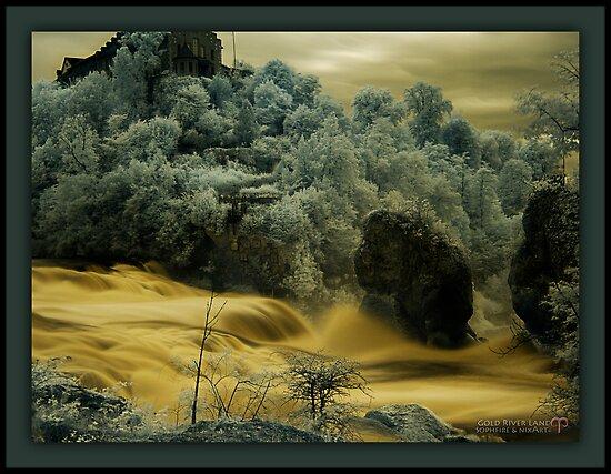 Gold River Land by nixArt