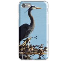 The Great Blue Heron iPhone Case/Skin
