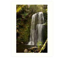 Beauchamp Falls Otways Art Print