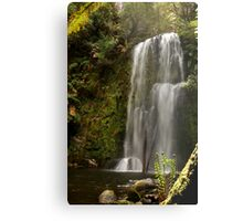 Beauchamp Falls Otways Metal Print