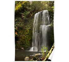 Beauchamp Falls Otways Poster