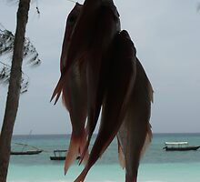 Zanzibar Red Snapper  by mystery