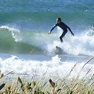 Surfers at Sulphur Creek (Tasmania) by gaylene