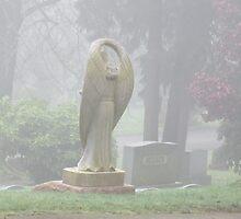 Angel in Cemetery by AuntieBarbie