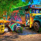 Jimbo's Magic Bus (and Squashed Bug, too) by njordphoto