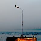 Shag on a Pole by sparrowdk