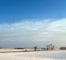 Frozen Farmland by CynLynn