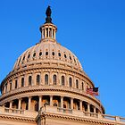 U. S. Capitol Dome and Statue of Freedom by John Schneider