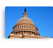 U. S. Capitol Dome and Statue of Freedom Canvas Print