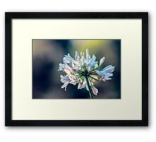 Every Last Moment... Framed Print