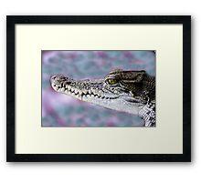Never smile at a crocodile Framed Print