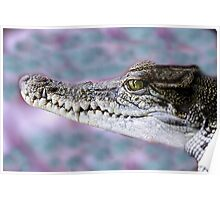 Never smile at a crocodile Poster