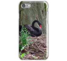 Mama Swan on her nest iPhone Case/Skin