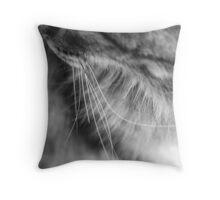 Feline Study III - Broken Whisker Throw Pillow