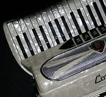 Accordian by Gaia Vision