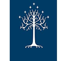 Tree of Gondor Photographic Print