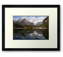 Spring's Coming Framed Print