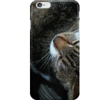 mycat friend2 iPhone Case/Skin