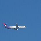 Hawaiian Airline by paulwhiteuvme