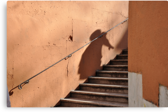 Shadows - by Daniela Cifarelli