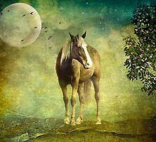 Midnight Runner by Scott Mitchell