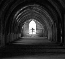 The Cellarium by nathanw08