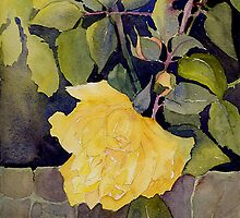 Yellow roses over the garden wall by Myhandyourheart