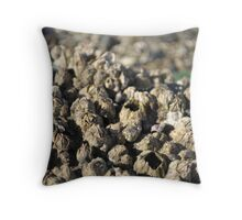 Rows upon rows of Barnacles Throw Pillow