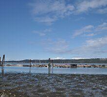 Fanny Bay Landscape 3 by TheKoopaBros