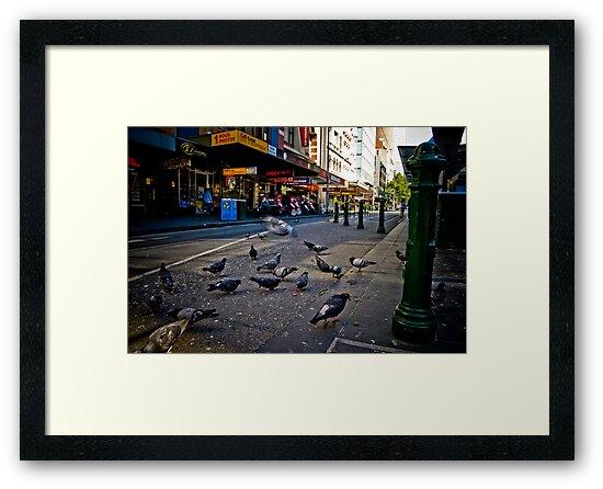 The Urban Environment by Brett Still