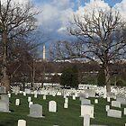 Arlington National Cemetary by Judson Joyce