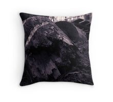 Log in DuoTone Throw Pillow