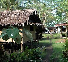 New Guinea 1 by Lynn  Cropp