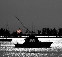 Fishing boat flying flag by Larry  Grayam