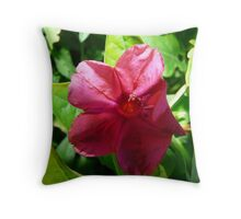 Silky Hot Pink Throw Pillow