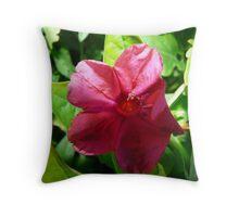 Silky Hot Pink Throw Pillow